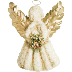 Angel - Gold wings in White